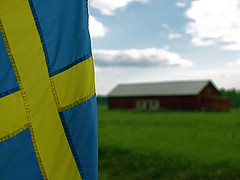 Swedish Flag by pixelthing