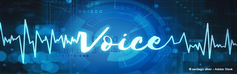 Sprachbiometrie in Sicherheitssystemen von Unternehmen